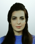 Noor Hayder Kadhim Alhaib